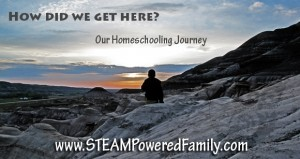 Our Journey to Homeschooling FB