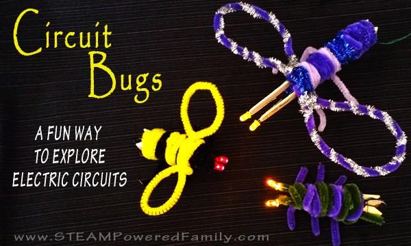 Circuit Bugs