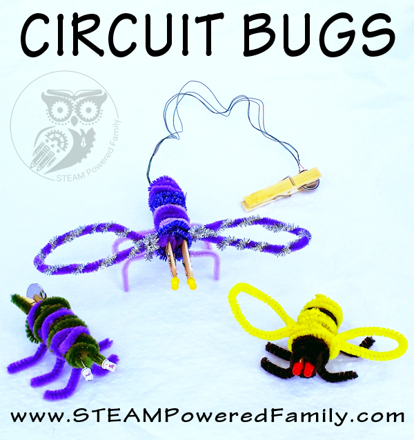 Circuit Bug