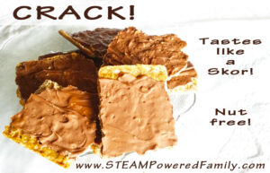 Crack Recipe - This amazingly delicious, nut-free chocolate toffee snack is perfect for the busy mom. Tastes like a homemade Skor bar. Fantastic for camp outs, family gatherings, days at the park, classroom parties and more. Soooo good!