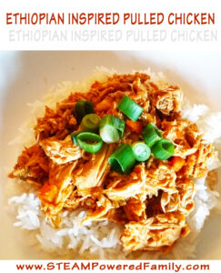 Ethiopian Inspired Chicken Dish That The Kids LOVE!