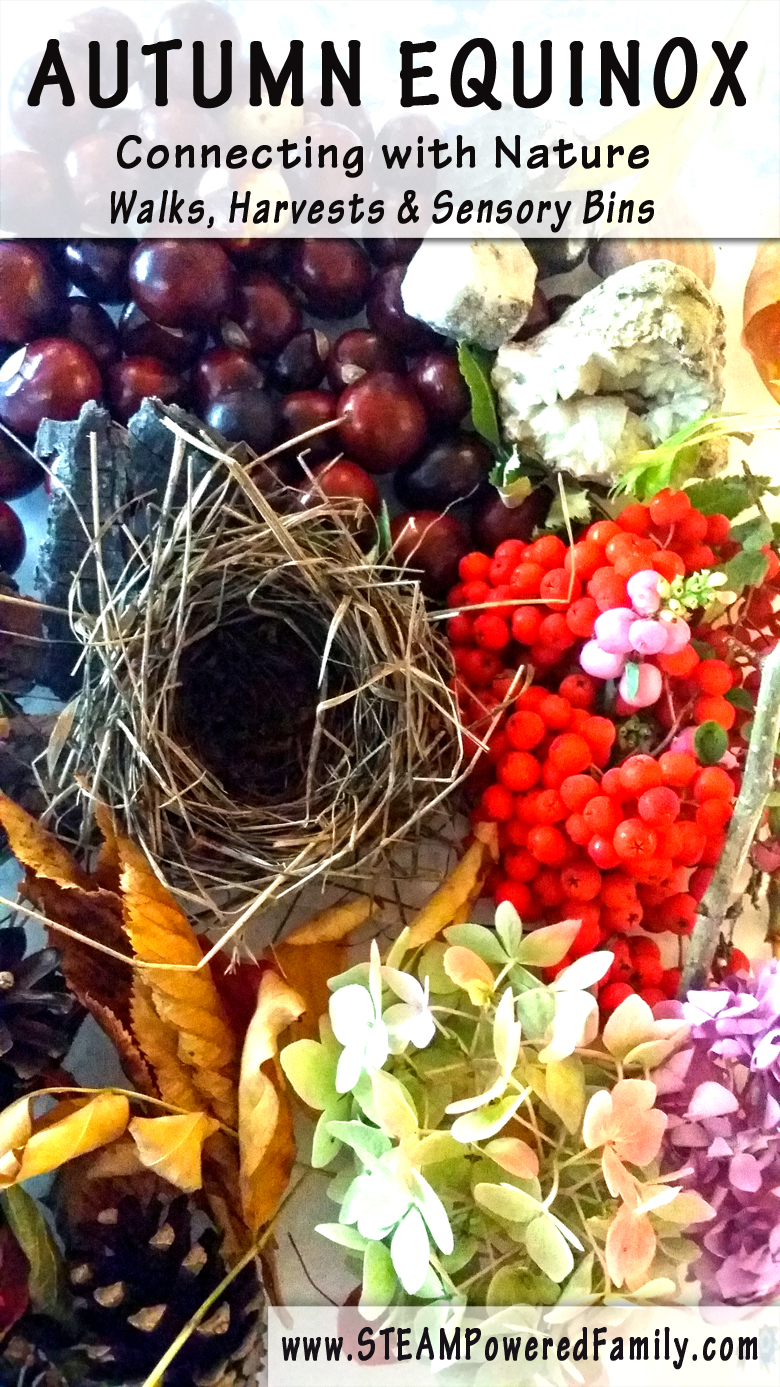 CONNECTING WITH NATURE - A nature harvest and sensory bin. Also known as Fall Equinox and Mabon