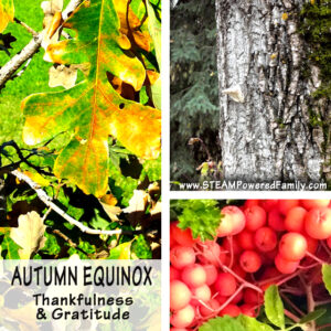 Autumn Equinox - Learning to be thankful and embrace gratitude during this change in seasons. Also known as Fall Equinox or Mabon