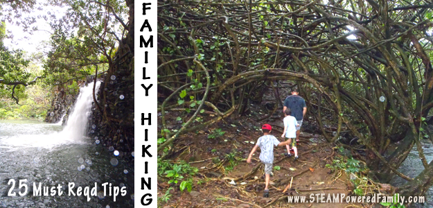 25 Tips For Family Hiking Adventures – Including tips for special needs, sensory and trauma.