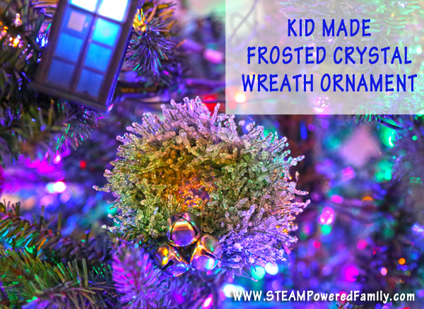 Kid Made Crystal Christmas Ornament - Adding some fun science creation to the holidays
