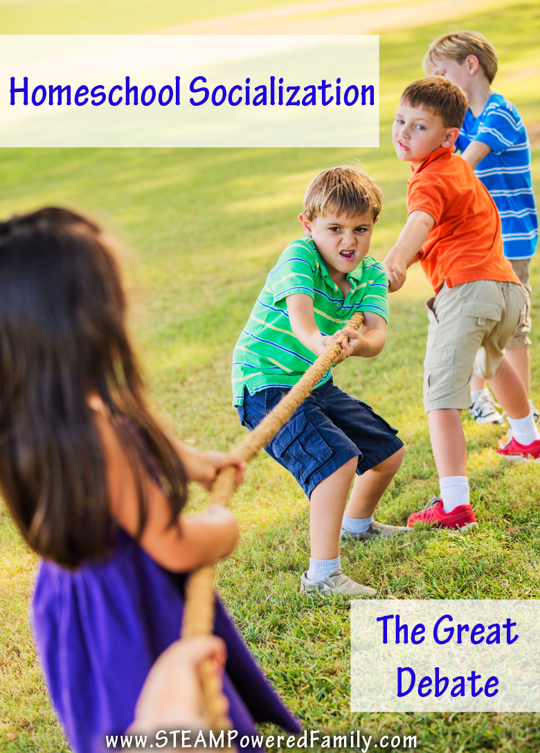 Homeschool Socialization - The Great Debate