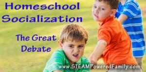 Homeschool Socialization - The Great Debate