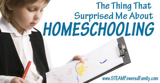 The thing that surpised me about homeschooling, and it's not what you think.