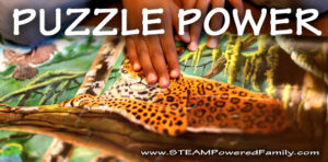 The Power of Puzzles! Learning, problem solving, fine motor, early math skills and more! Learn how amazing puzzles really are!