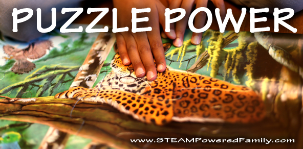 The Power Of Puzzles For Learning