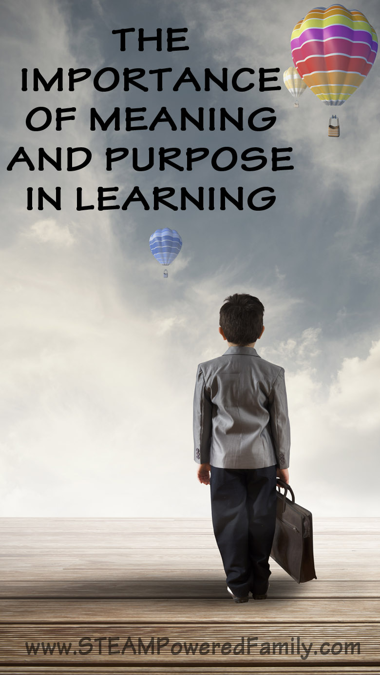 The importance of meaning and purpose in learning can not be underestimated. With purpose and passion anyone can learn almost anything, but how can we spark that passion for learning and education?