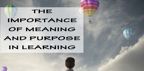 Why Meaning And Purpose Is So Important For Learning