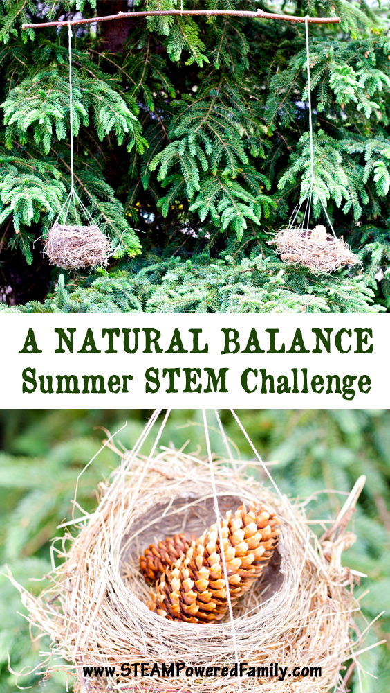 It's time for an outdoor STEM challenge! Take your learning outdoors with this fun, natural fulcrum balance for some wonderful natural exploration and STEM learning.