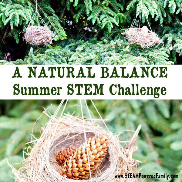 A Natural Balance - Finding balance in nature