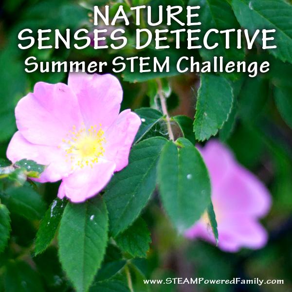 Enjoy being a Nature Senses Detective!