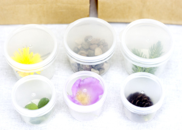 This sensory exploration activity is a wonderful way to get outside, get into nature and embrace a few moments of mindfulness. Enjoy being a Nature Senses Detective!