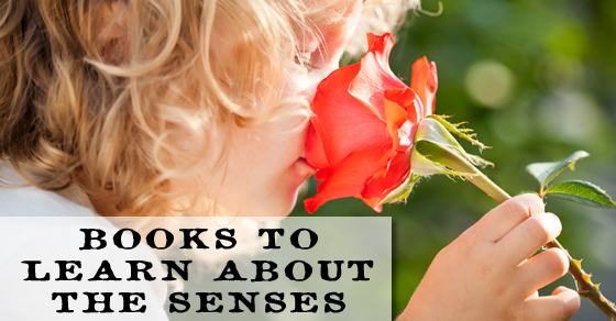 Become a great scientist by mastering observation and interpretation through your senses. Learn how they work with these books about the senses for all ages