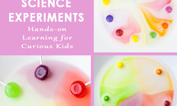 Colorful Candy Science Experiments