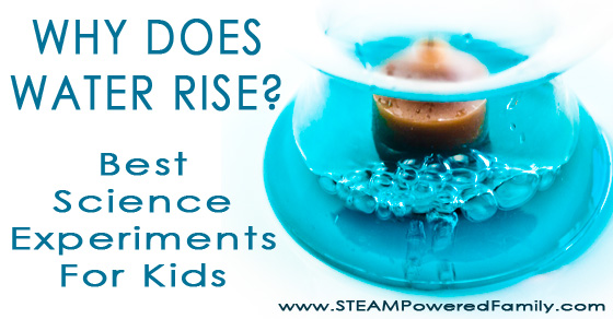 Why Does Water Rise? Best Science Experiments for Kids!