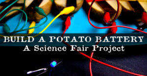 Build a potato battery that powers a light bulb. A fantastic STEM activity and science fair project exploring circuits and energy production.