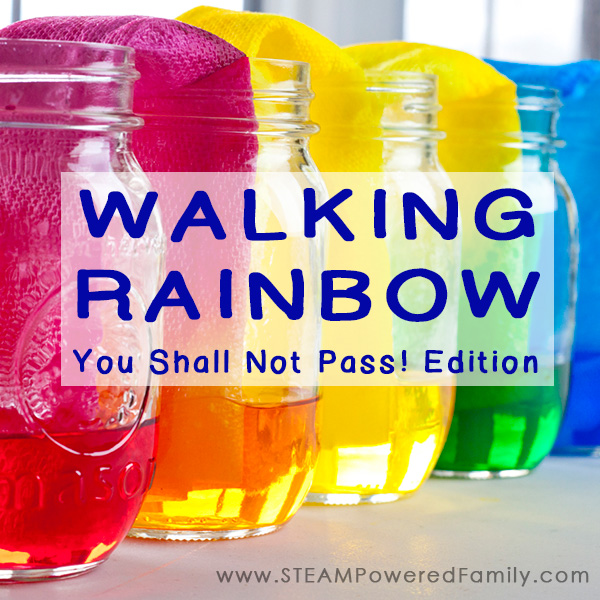 The Walking Rainbow science experiment should have been easy, but due to a mistake we discovered a fascinating capillary action and natural balance project.