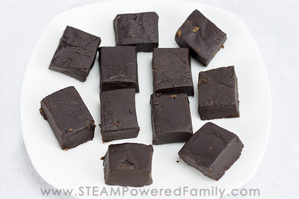 Fudge is a delicious, creamy candy treat. Making it is a fascinating science lesson. Vanilla and chocolate fudge recipes are shared with the candy science.