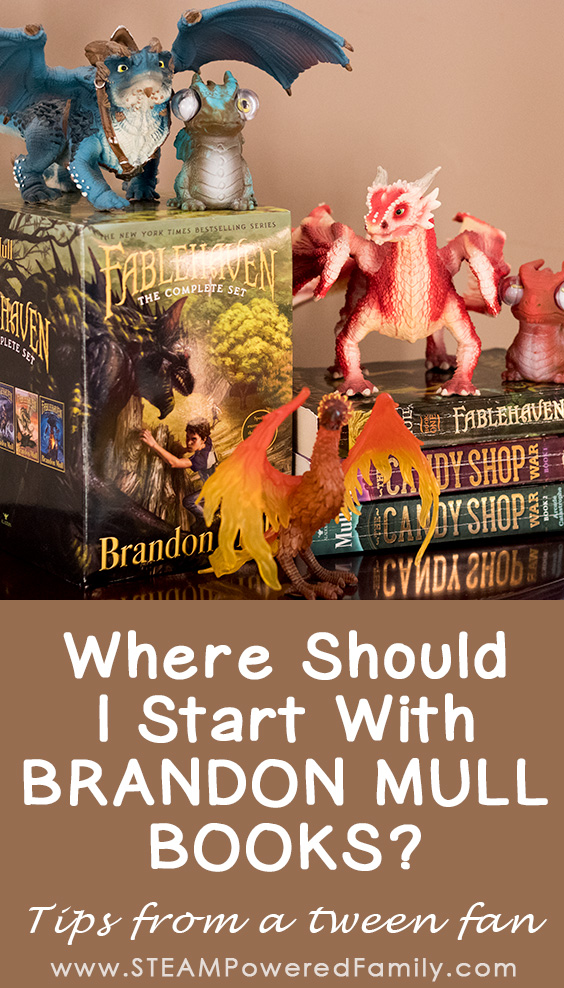 Which Brandon Mull Books Should I Read Tips From A Tween Book Lover