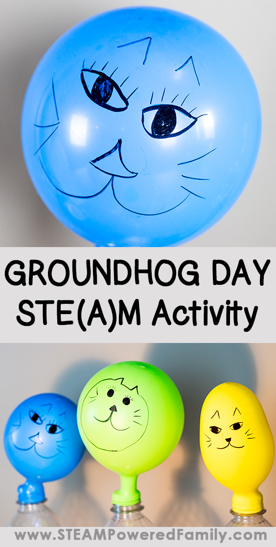Ground Hog Day Kids STEM Activity is a fun way to explore this very old tradition that was used to predict the coming of spring. With this STEM activity, kids can test to see if their animal will see it's shadow.