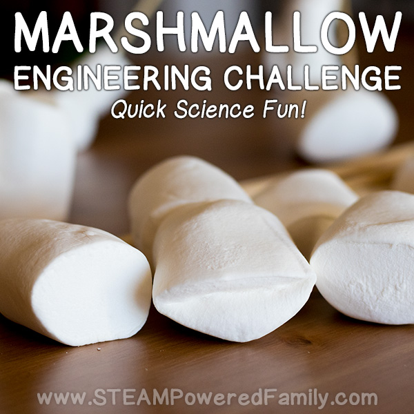 Need a quick and easy educational challenge that kids will love, has a super quick clean up, and uses easy to find items? This Marshmallow Engineering Challenge is a fantastic engineering minute to win it type challenge that helps kids build their problem solving skills and can be adapted for a variety of levels.