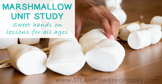 Marshmallow Science Unit Study