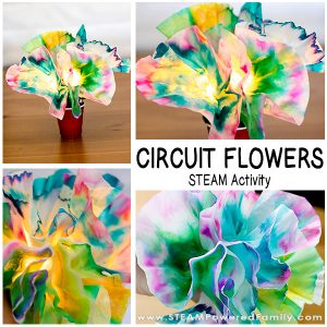 With the popularity of our Circuit Bugs STEM Activity it was time to come up with something new, something with a little extra art. Introducing Circuit Flowers! Explore chromatography, diffusion, engineering and circuit building with this hands on STEAM activity. Great for mothers' day, spring, girls in STEM, and more!