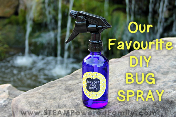 Homemade bug spray that is perfect for the whole family this summer.