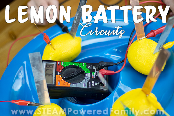 Lemon battery producing more volts than 2 AA batteries, enough to use lemons to light up a light bulb