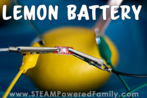 Lemon powered lights is a natural way to explore electricity in this fun hands on experiment