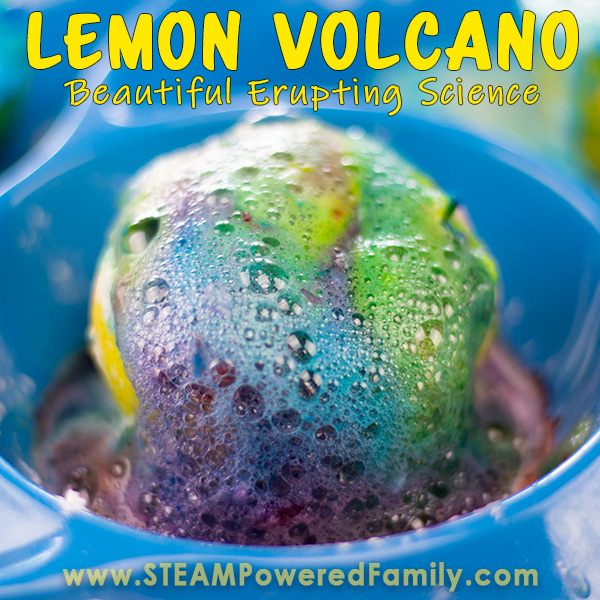Lemon science experiment creating a beautiful, sensory rich exploding lemon volcano