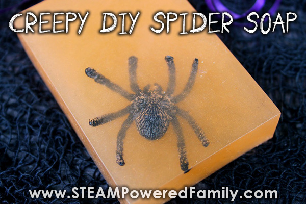 So creepy with spiders in and crawling out of the homemade soap