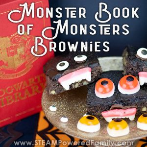 Monster Book of Monsters Brownies