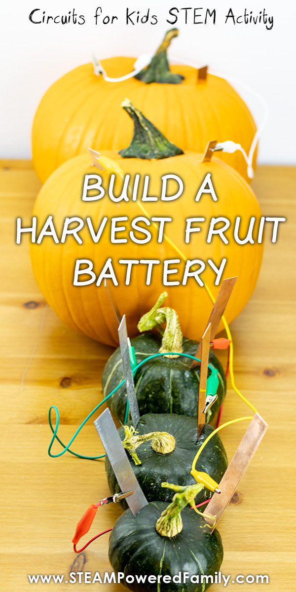 Fruit battery science experiment for kids