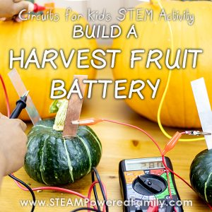 Fall Harvest Fruit Battery Circuit activity