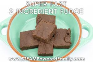 2 ingredient fudge recipe