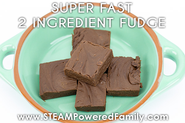 2 Ingredient Easy Fudge Recipe For Kids