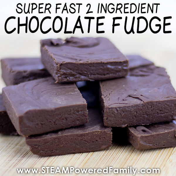2 ingredient chocolate fudge recipe