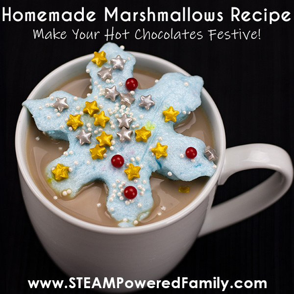 delicious homemade marshmallows with hot chocolate