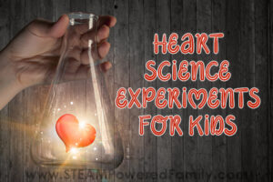 Heart science experiments for kids