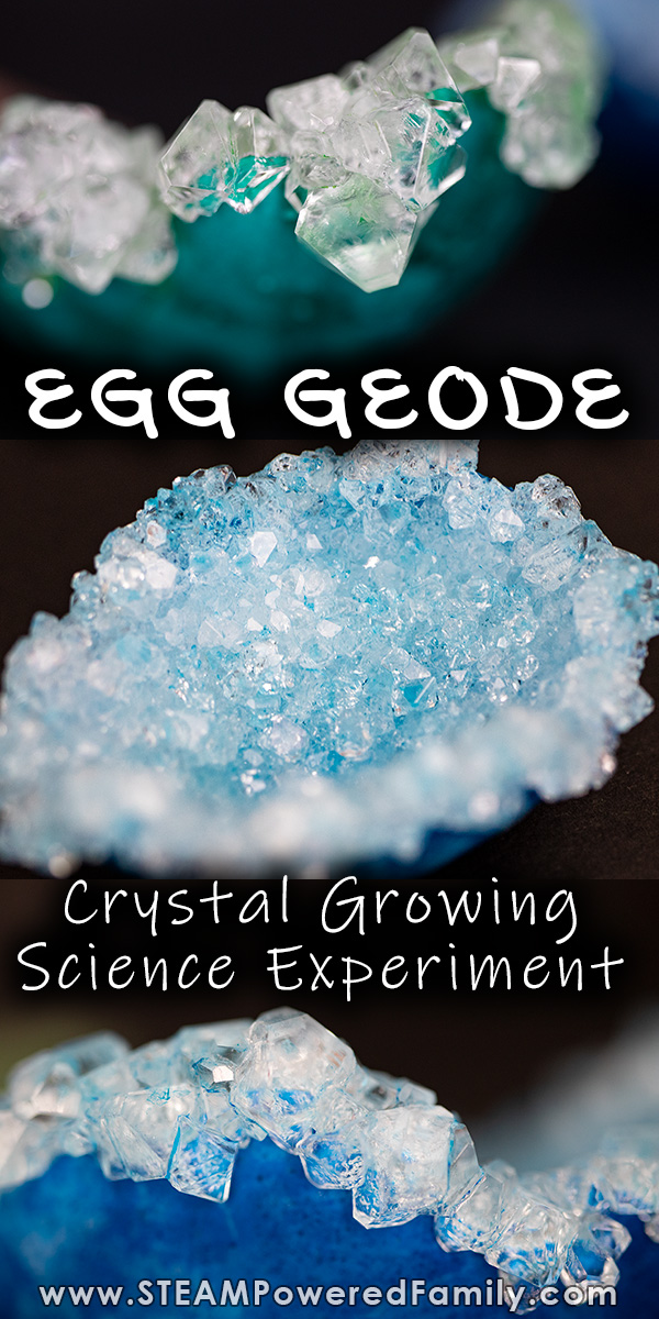 Crystal Growing Science Egg Geode