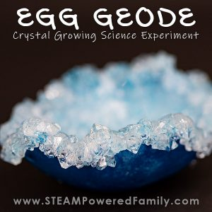 Crystal Growing Science Experiment