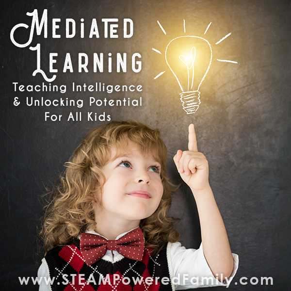 Explore teaching intelligence with Mediated learning for kids with trauma history, autism, anxiety and more.