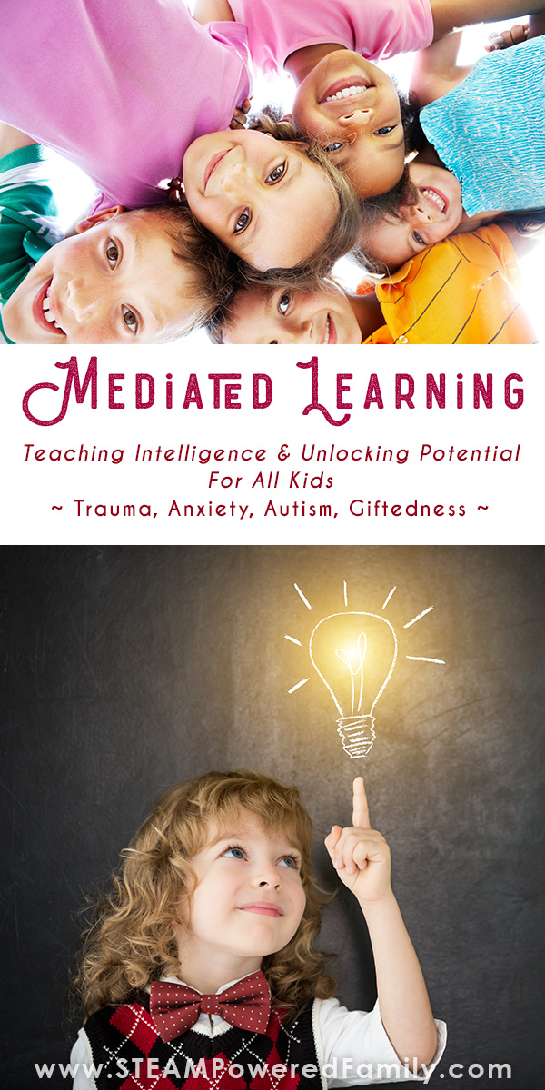 Mediated Learning for Teaching Intelligence