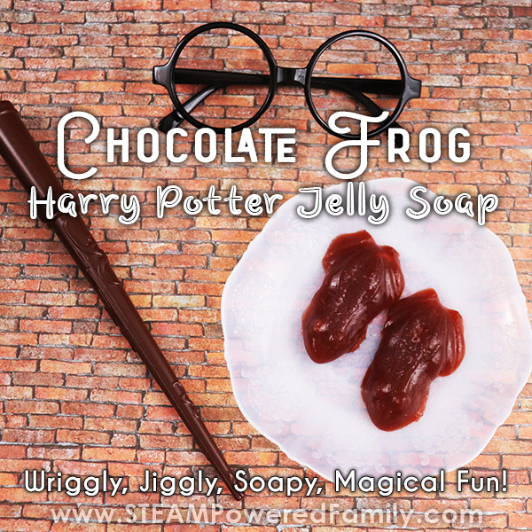 Chocolate Frog Harry Potter Soap Jellies