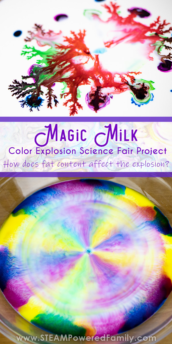 Magic Milk science fair project exploring the effect of fat content